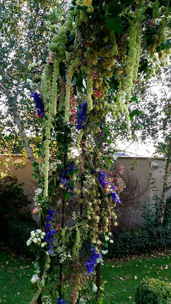 arche fleuri